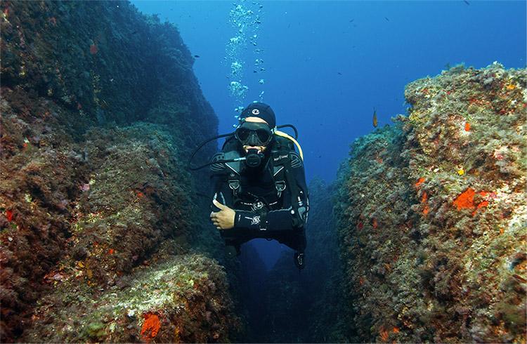 Diving Calvi A Piaghja - Formations françaises FFESSM & ANMP